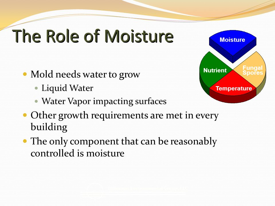 The Role of Moisture Mold needs water to grow Liquid Water Water Vapor impacting surfaces Other growth requirements are met in every building The only component that can be reasonably controlled is moisture Nutrient Fungal Spores Moisture Temperature Hillmann Environmental Group, LLC