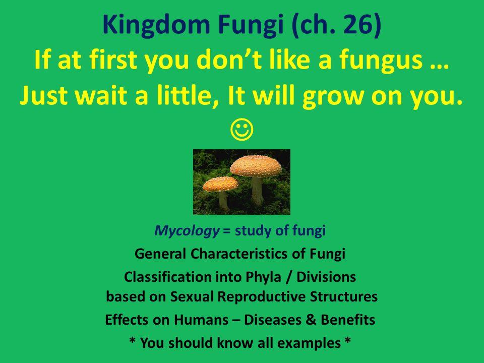 Kingdom Fungi (ch.
