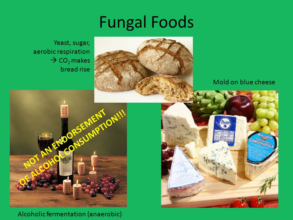 Fungal Foods NOT AN ENDORSEMENT OF ALCOHOL CONSUMPTION!!.