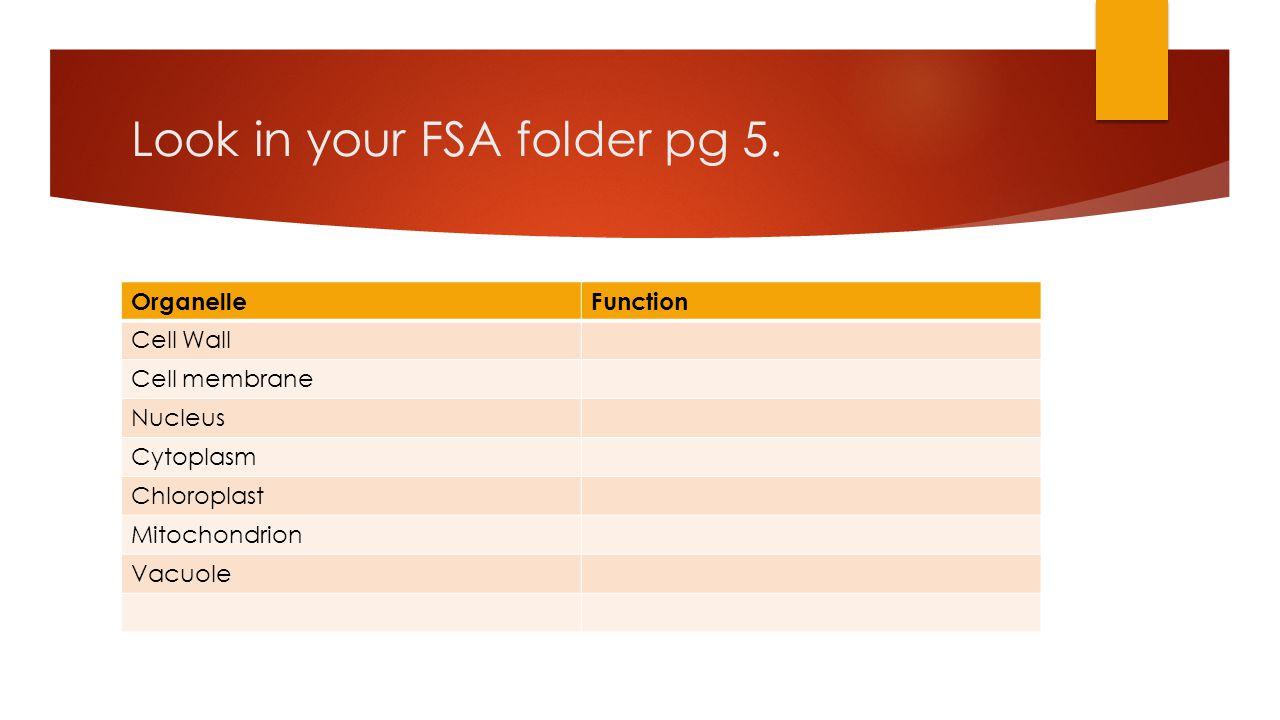 Look in your FSA folder pg 5.