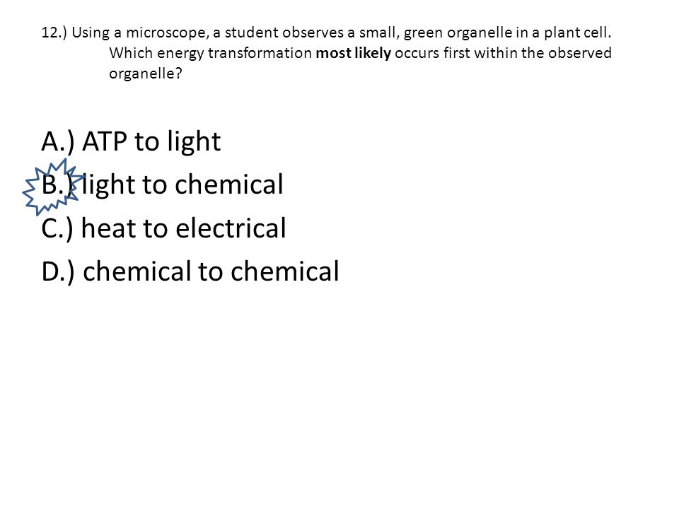 12.) Using a microscope, a student observes a small, green organelle in a plant cell. Which energy transformation most likely occurs first within the