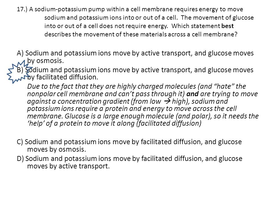 17.) A sodium-potassium pump within a cell membrane requires energy to move sodium and potassium ions into or out of a cell. The movement of glucose i