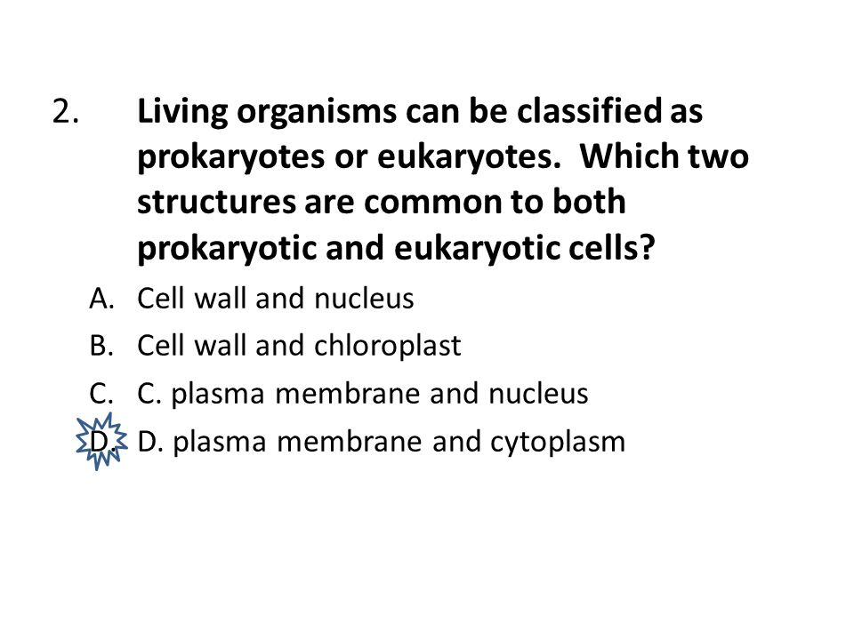 2.Living organisms can be classified as prokaryotes or eukaryotes. Which two structures are common to both prokaryotic and eukaryotic cells? A.Cell wa
