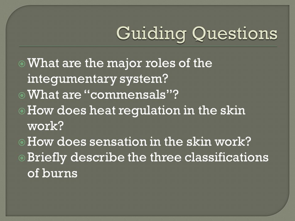 """ What are the major roles of the integumentary system?  What are """"commensals""""?  How does heat regulation in the skin work?  How does sensation in"""