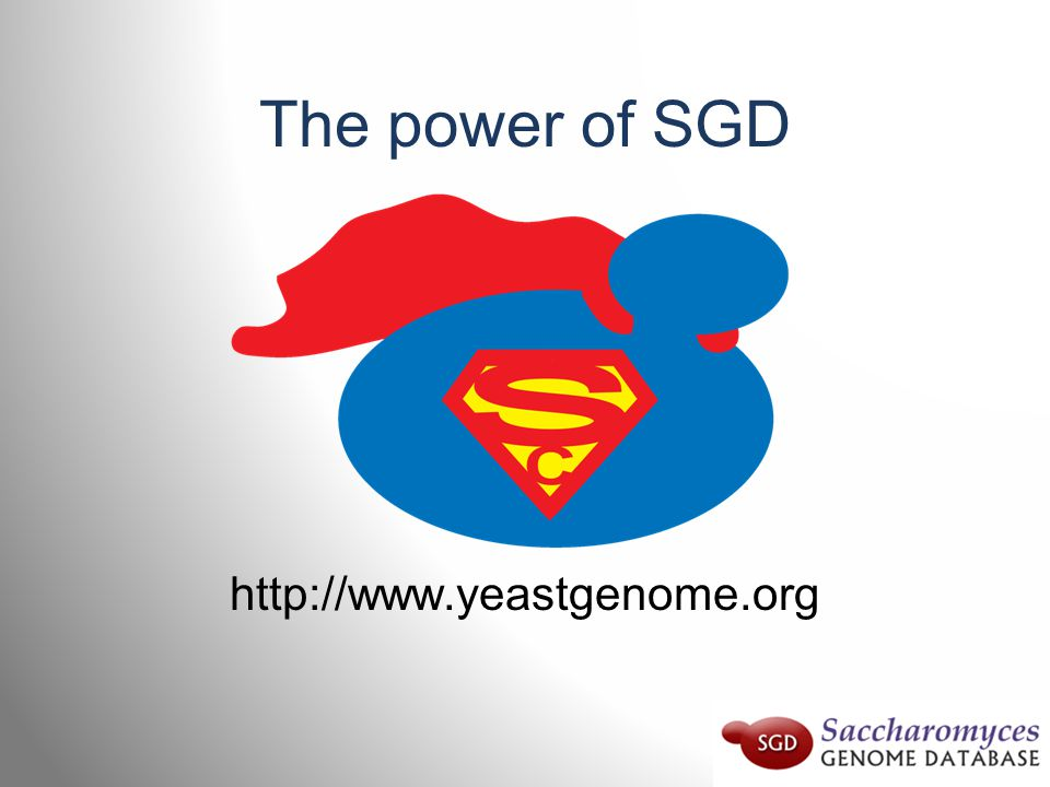The power of SGD http://www.yeastgenome.org
