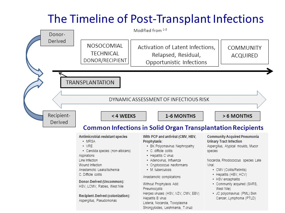 NOSOCOMIAL TECHNICAL DONOR/RECIPIENT Activation of Latent Infections, Relapsed, Residual, Opportunistic Infections COMMUNITY ACQUIRED Common Infection