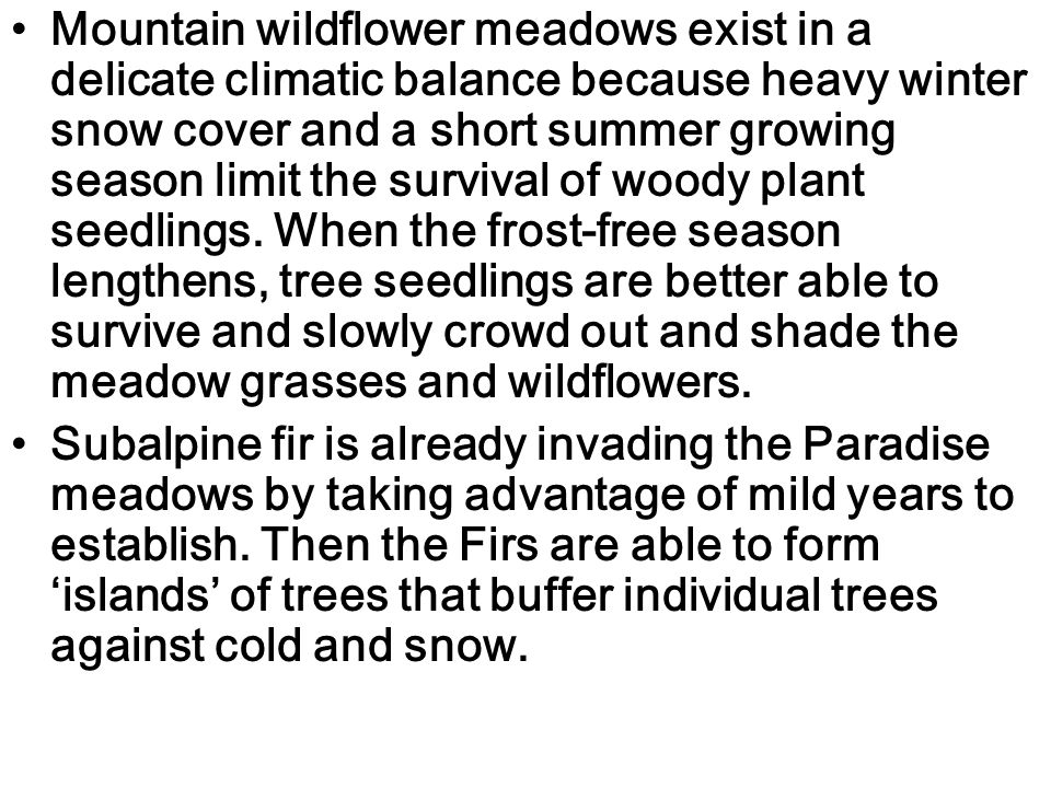 Mountain wildflower meadows exist in a delicate climatic balance because heavy winter snow cover and a short summer growing season limit the survival of woody plant seedlings.