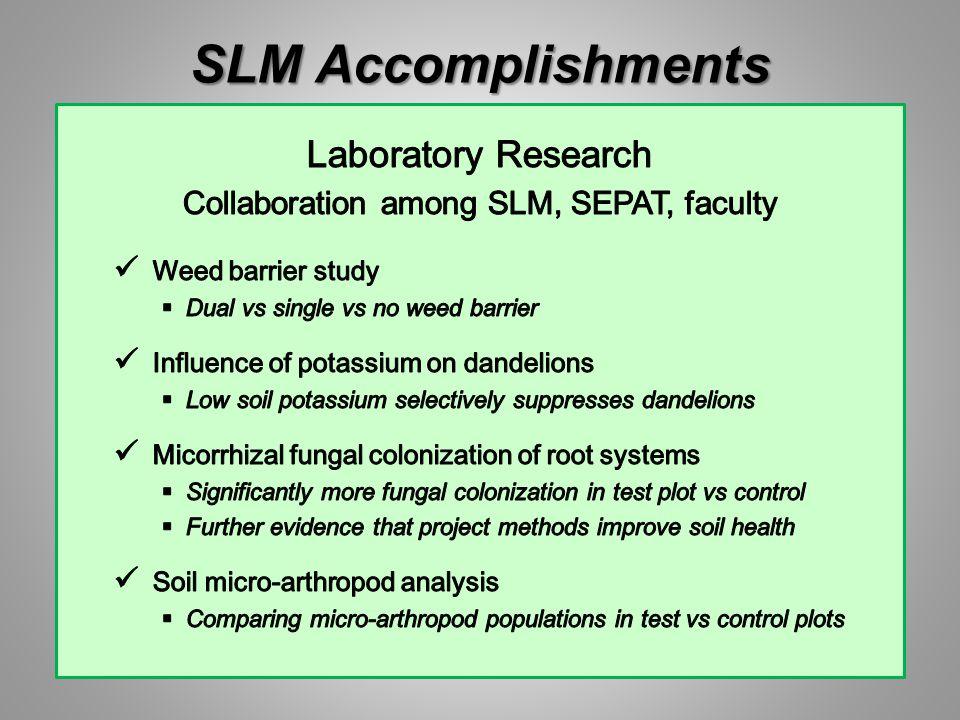 SLM Accomplishments