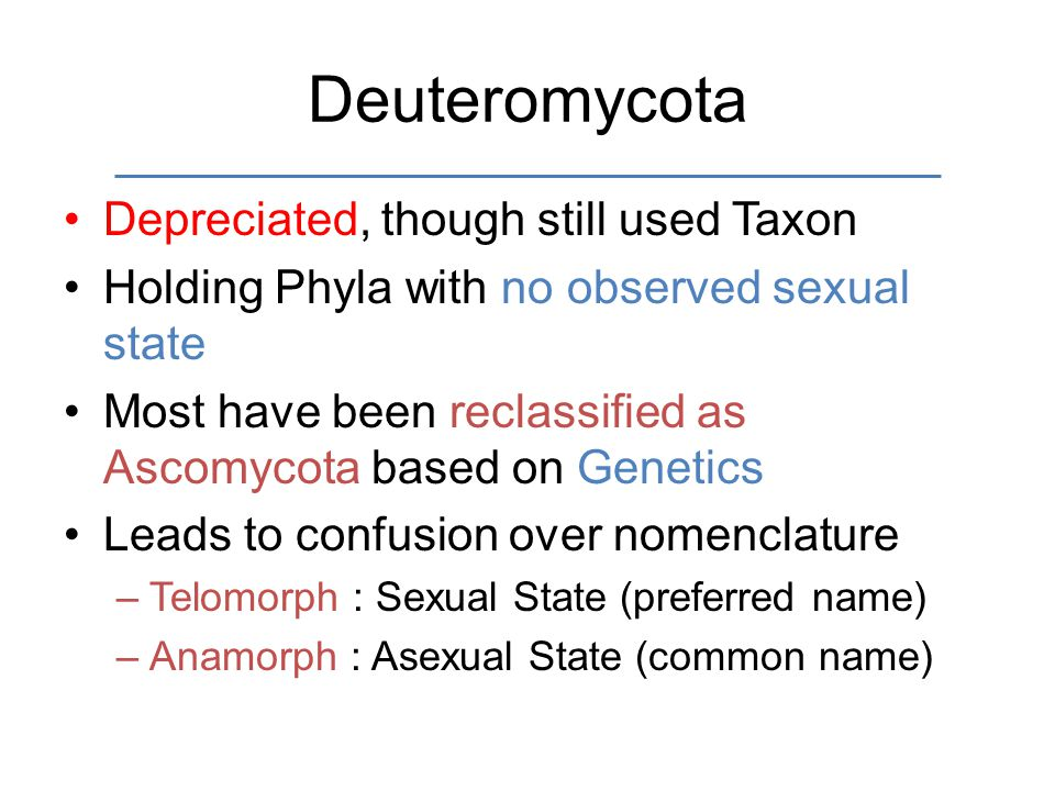 Deuteromycota Depreciated, though still used Taxon Holding Phyla with no observed sexual state Most have been reclassified as Ascomycota based on Genetics Leads to confusion over nomenclature –Telomorph : Sexual State (preferred name) –Anamorph : Asexual State (common name)