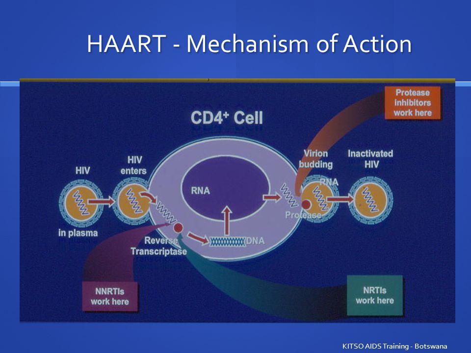 HAART - Mechanism of Action KITSO AIDS Training - Botswana