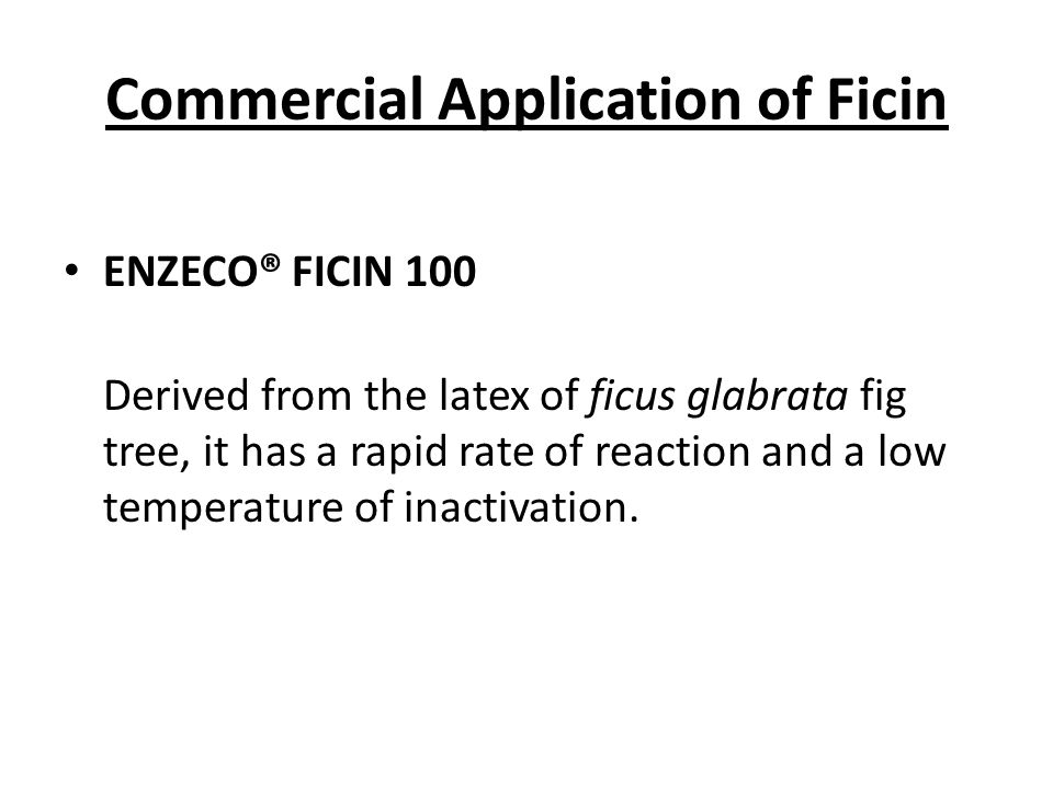 Commercial Application of Ficin ENZECO® FICIN 100 Derived from the latex of ficus glabrata fig tree, it has a rapid rate of reaction and a low temperature of inactivation.
