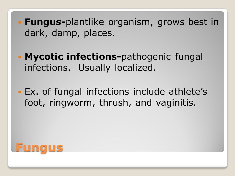 Fungus Fungus-plantlike organism, grows best in dark, damp, places. Mycotic infections-pathogenic fungal infections. Usually localized. Ex. of fungal