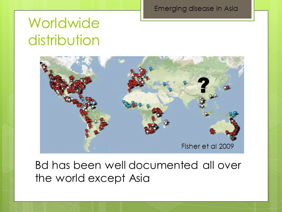 Worldwide distribution Fisher et al 2009 ? Bd has been well documented all over the world except Asia Emerging disease in Asia