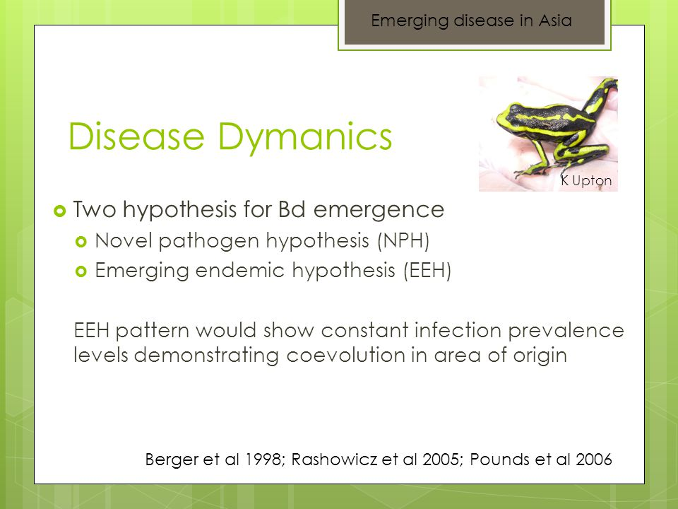Disease Dymanics  Two hypothesis for Bd emergence  Novel pathogen hypothesis (NPH)  Emerging endemic hypothesis (EEH) EEH pattern would show consta