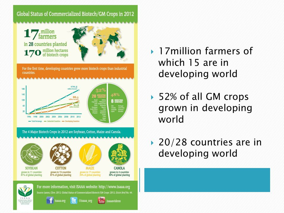  17 million farmers  15 are in Developing  World Grow 400 Million acres  Developing world  Grows 52% of All GE crops  20 of 28 countries that  Grow GE crops in  Developing World   grows 52%  17million farmers of which 15 are in developing world  52% of all GM crops grown in developing world  20/28 countries are in developing world