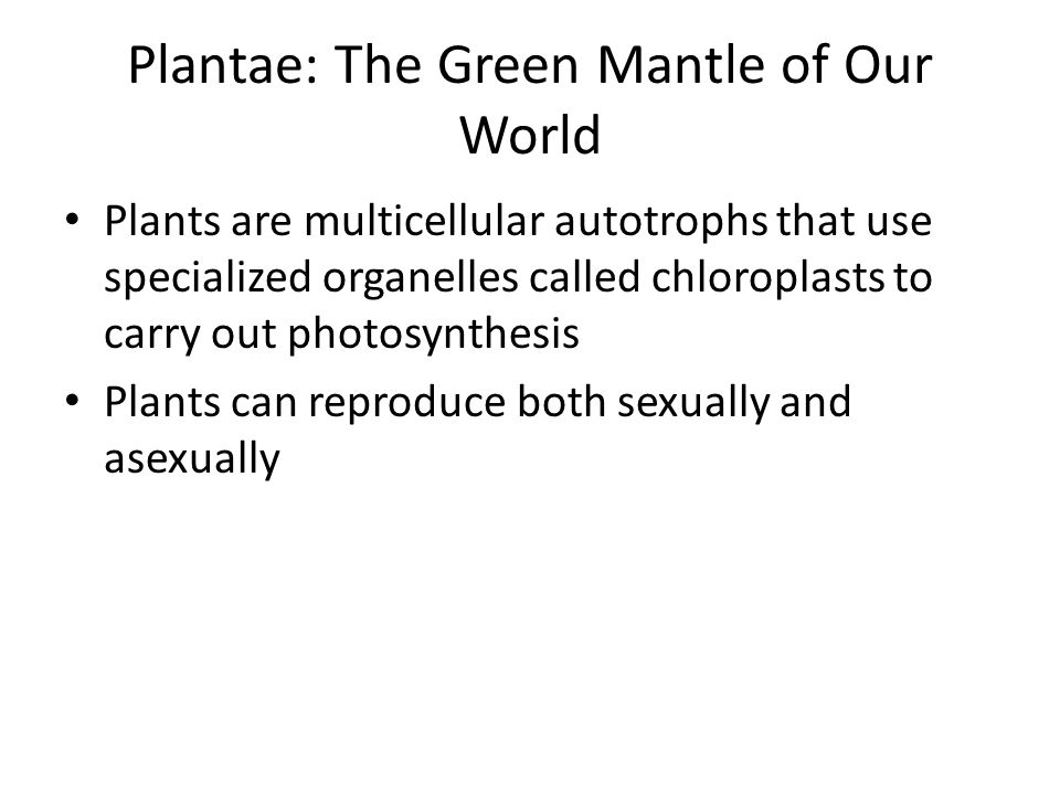Plantae: The Green Mantle of Our World Plants are multicellular autotrophs that use specialized organelles called chloroplasts to carry out photosynth