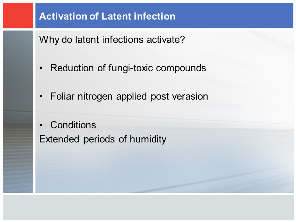 Activation of Latent infection Why do latent infections activate.