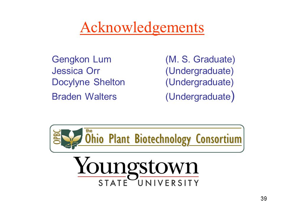 39 Acknowledgements Gengkon Lum(M. S.