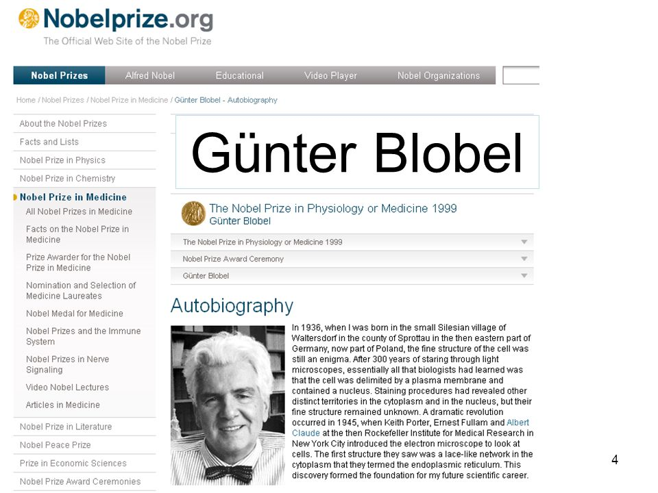 4 Günter Blobel