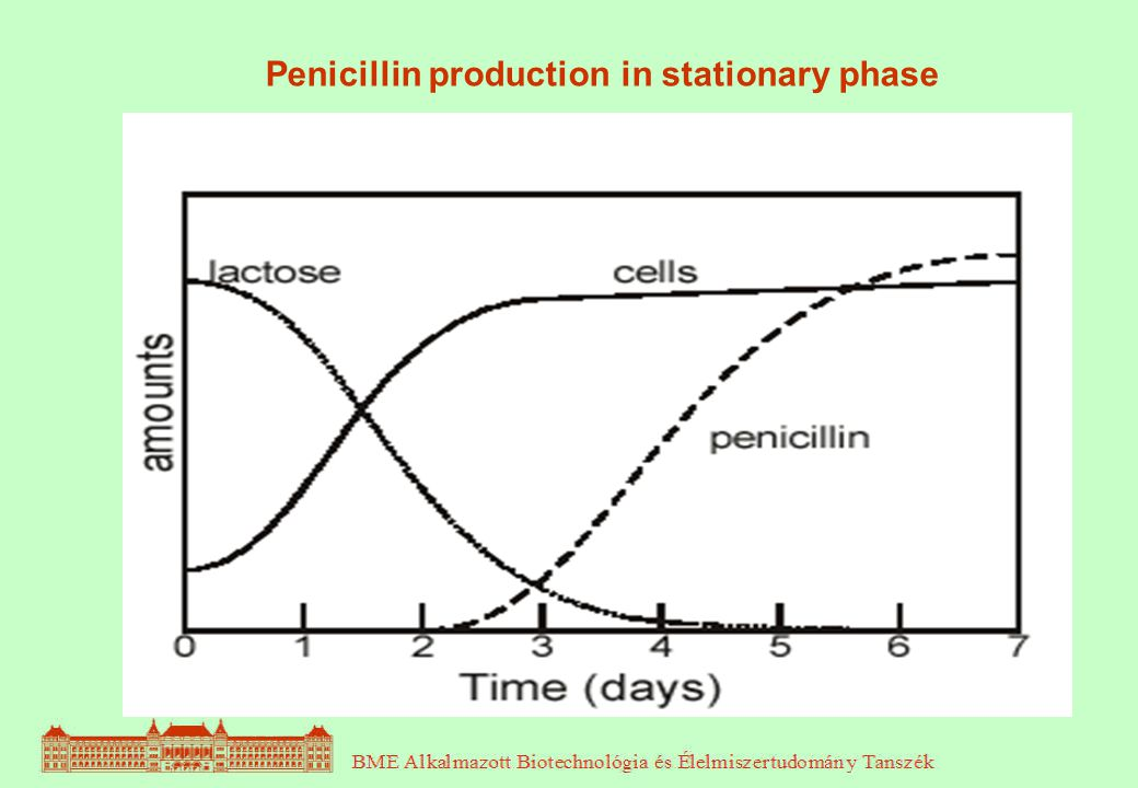 When penicillin was first made at the end of the second world war using the fungus Penicilium notatum, the process made 1 mg dm -3.