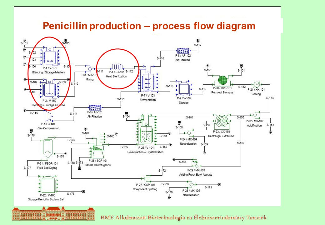Penicillin production – process flow diagram