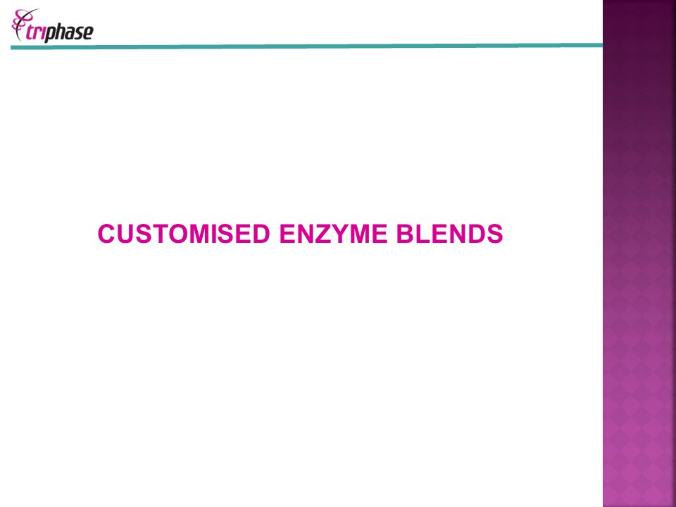 CUSTOMISED ENZYME BLENDS