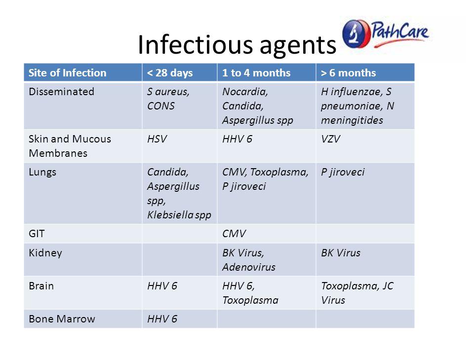 Infectious agents Site of Infection< 28 days1 to 4 months> 6 months DisseminatedS aureus, CONS Nocardia, Candida, Aspergillus spp H influenzae, S pneumoniae, N meningitides Skin and Mucous Membranes HSVHHV 6VZV LungsCandida, Aspergillus spp, Klebsiella spp CMV, Toxoplasma, P jiroveci P jiroveci GITCMV KidneyBK Virus, Adenovirus BK Virus BrainHHV 6HHV 6, Toxoplasma Toxoplasma, JC Virus Bone MarrowHHV 6