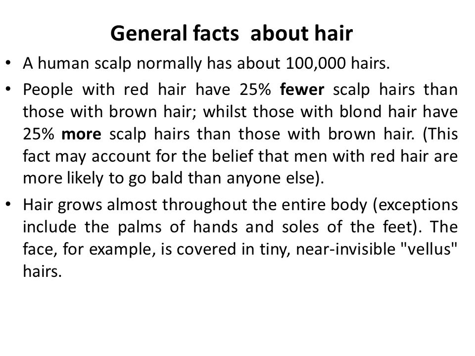 General facts about hair A human scalp normally has about 100,000 hairs. People with red hair have 25% fewer scalp hairs than those with brown hair; w