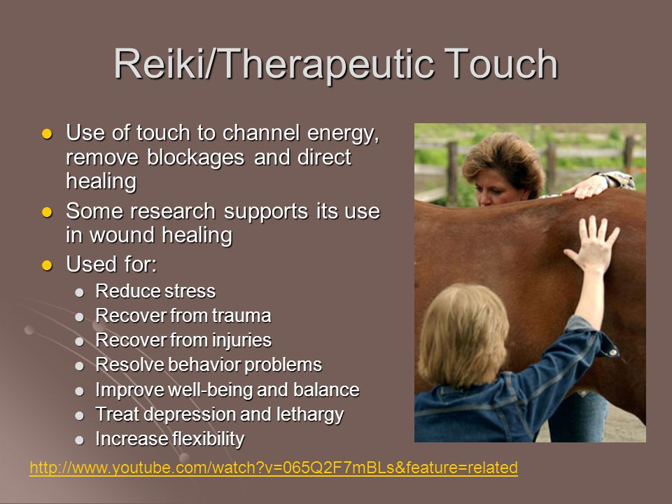 Reiki/Therapeutic Touch Use of touch to channel energy, remove blockages and direct healing Use of touch to channel energy, remove blockages and direct healing Some research supports its use in wound healing Some research supports its use in wound healing Used for: Used for: Reduce stress Reduce stress Recover from trauma Recover from trauma Recover from injuries Recover from injuries Resolve behavior problems Resolve behavior problems Improve well-being and balance Improve well-being and balance Treat depression and lethargy Treat depression and lethargy Increase flexibility Increase flexibility http://www.youtube.com/watch v=065Q2F7mBLs&feature=related