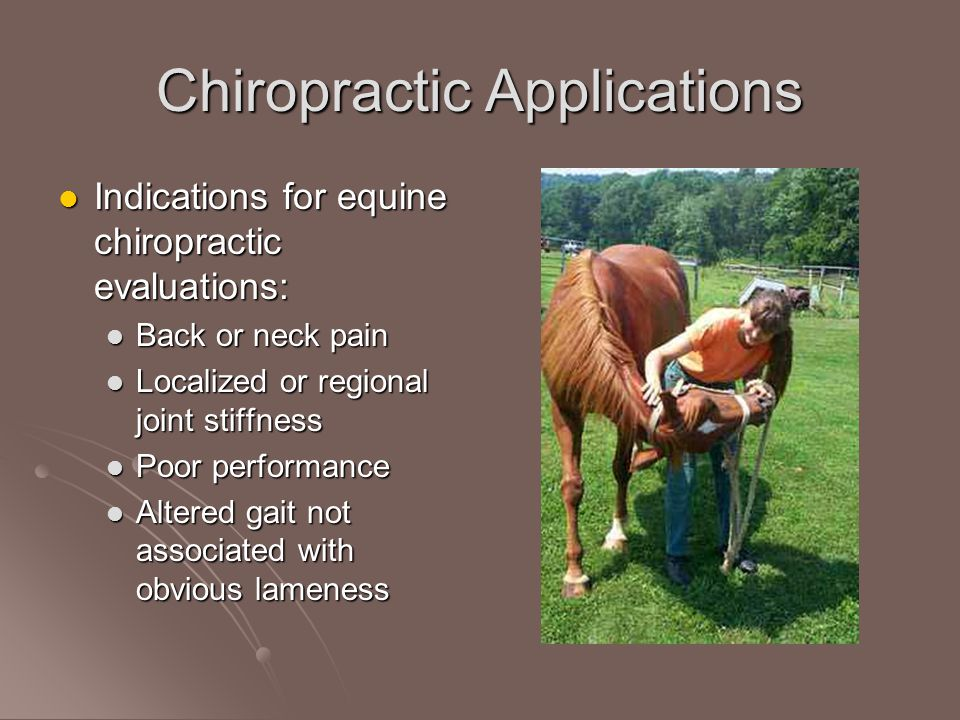 Chiropractic Applications Indications for equine chiropractic evaluations: Indications for equine chiropractic evaluations: Back or neck pain Back or neck pain Localized or regional joint stiffness Localized or regional joint stiffness Poor performance Poor performance Altered gait not associated with obvious lameness Altered gait not associated with obvious lameness