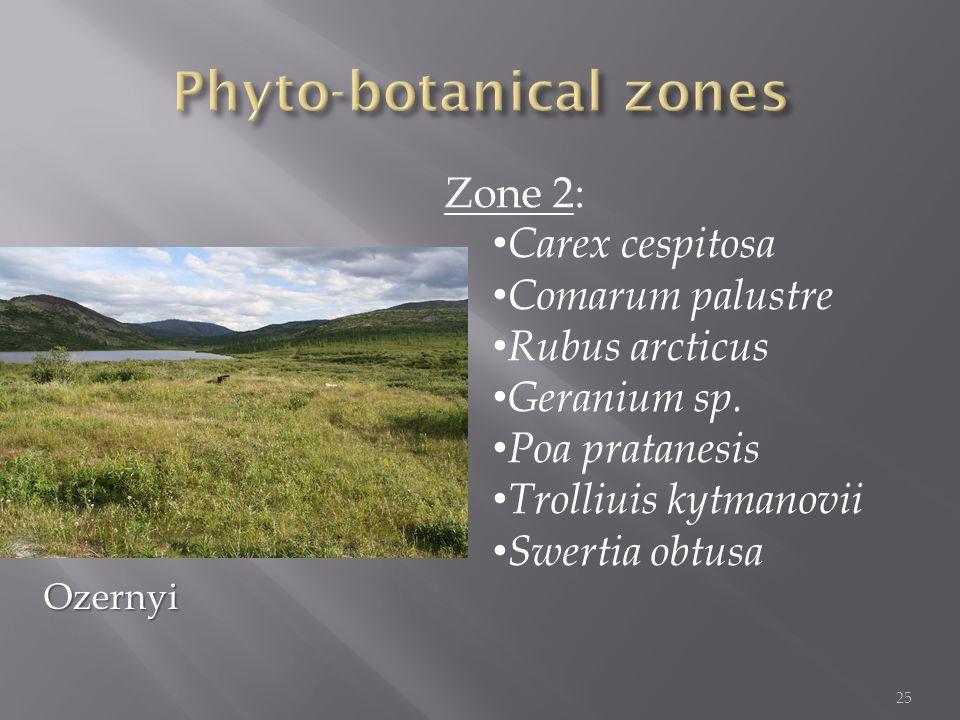 Zone 2: Carex cespitosa Comarum palustre Rubus arcticus Geranium sp.