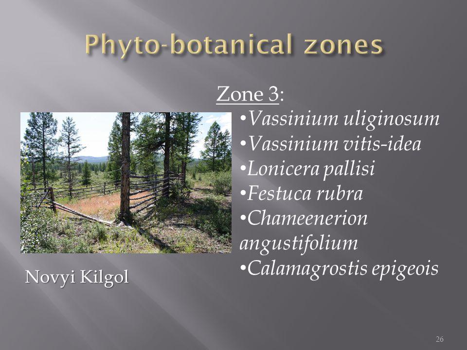 Zone 3: Vassinium uliginosum Vassinium vitis-idea Lonicera pallisi Festuca rubra Chameenerion angustifolium Calamagrostis epigeois 26 Novyi Kilgol