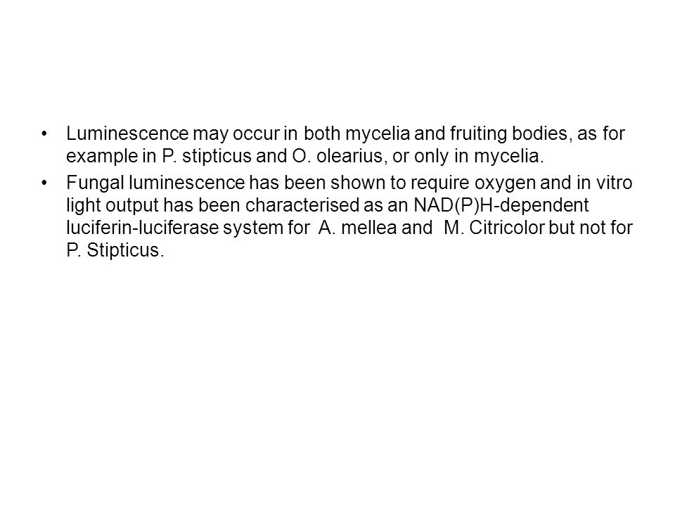 Luminescence may occur in both mycelia and fruiting bodies, as for example in P.