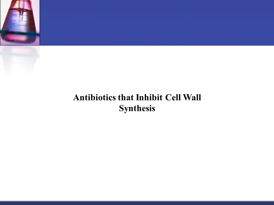 Antibiotics that Inhibit Cell Wall Synthesis