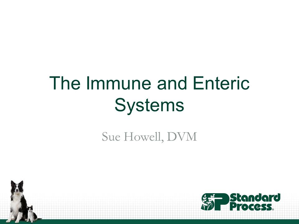 The Immune and Enteric Systems Sue Howell, DVM