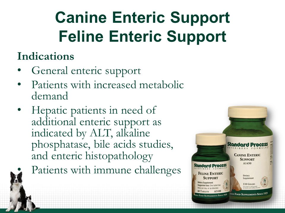 Canine Enteric Support Feline Enteric Support Indications General enteric support Patients with increased metabolic demand Hepatic patients in need of additional enteric support as indicated by ALT, alkaline phosphatase, bile acids studies, and enteric histopathology Patients with immune challenges