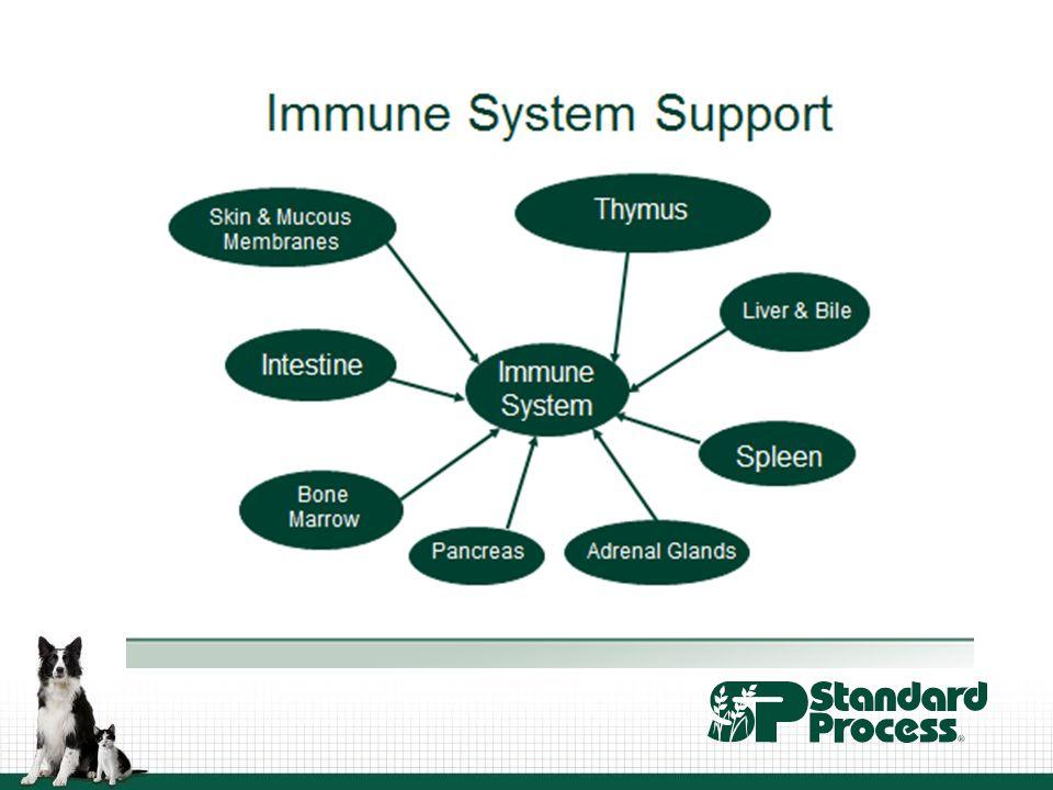 Ingredients that support the immune system http://vimeo.com/62369403 Spanish black radish RNA Buckwheat leaf juice and seed L-glutamine