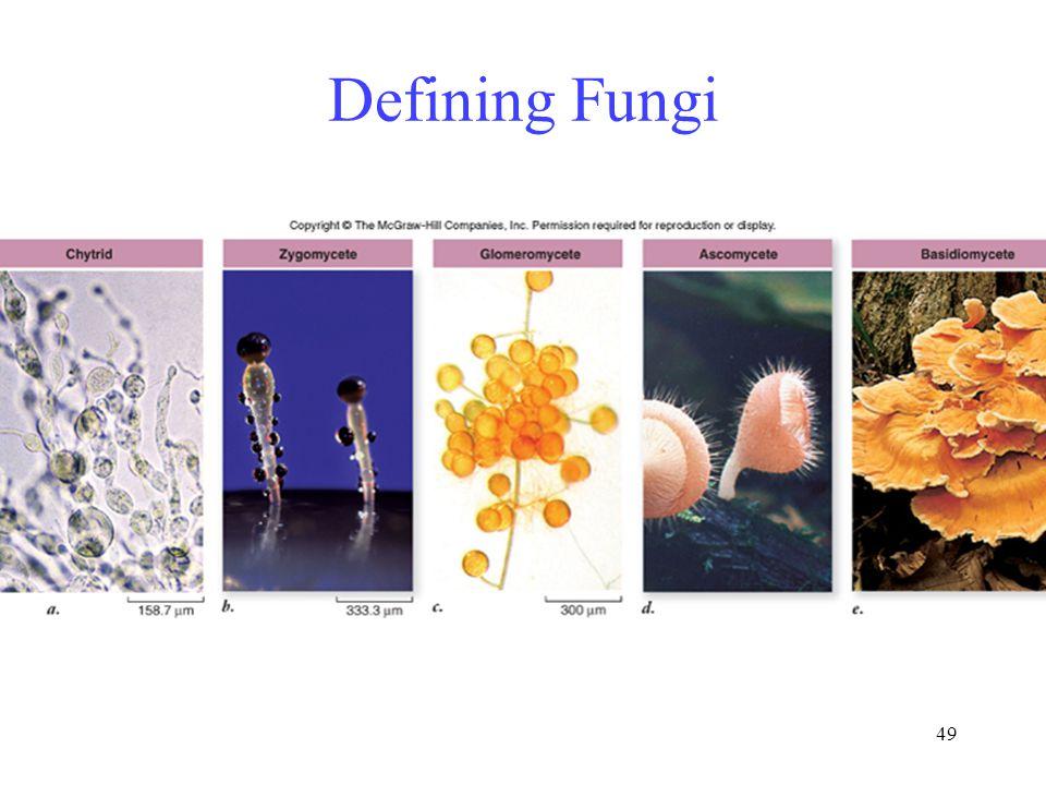 49 Defining Fungi