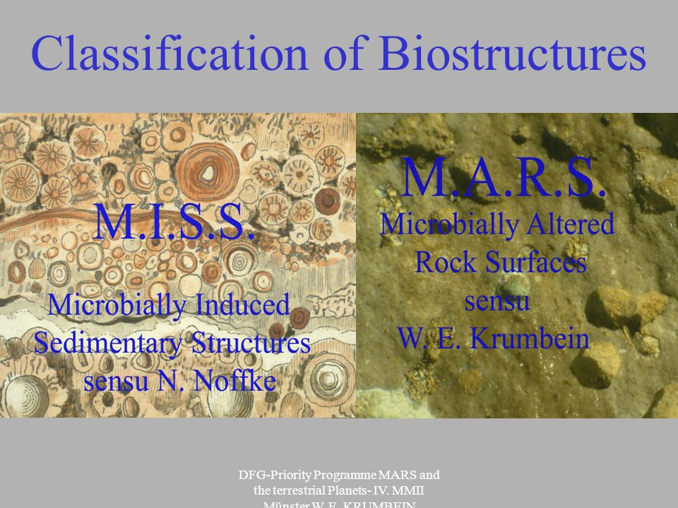 DFG-Priority Programme MARS and the terrestrial Planets- IV.