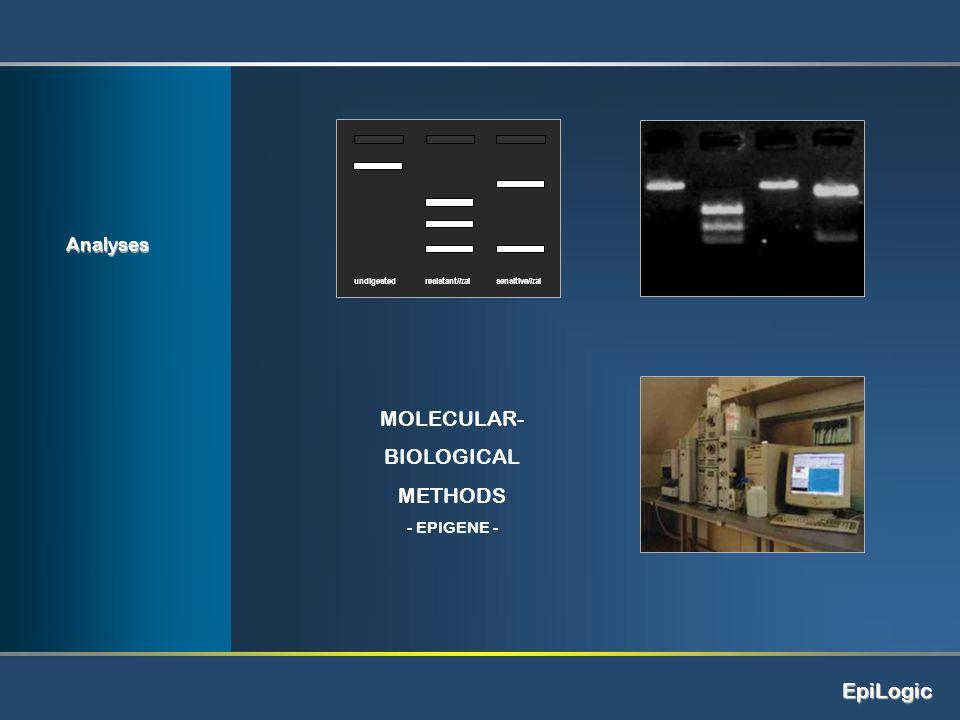 EpiLogic MOLECULAR- BIOLOGICAL METHODS - EPIGENE - undigestedsensitive/ItaIresistant/ItaI Analyses