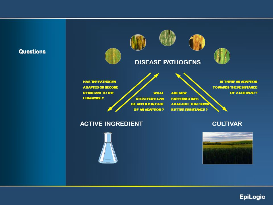 EpiLogic DISEASE PATHOGENS CULTIVARACTIVE INGREDIENT Questions HAS THE PATHOGEN ADAPTED OR BECOME RESISTANT TO THE FUNGICIDE .