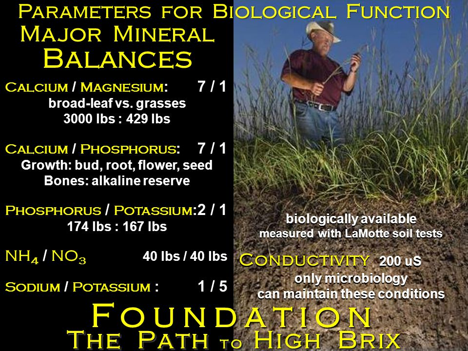 The Path to High Brix Foundation Parameters for Biological Function biologically available measured with LaMotte soil tests Conductivity 200 uS only microbiology can maintain these conditions Calcium / Magnesium : 7 / 1 broad-leaf vs.