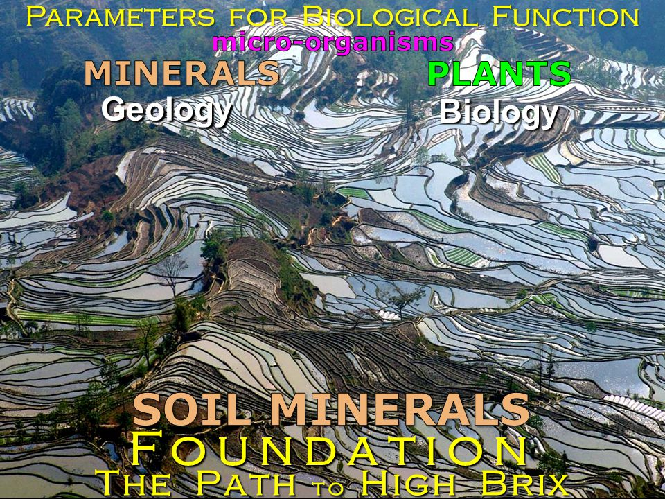Geology Parameters for Biological Function The Path to High Brix Foundation Biology