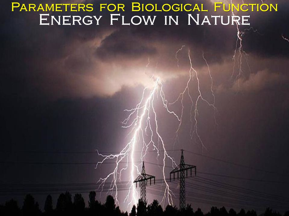 Parameters for Biological Function Energy Flow in Nature