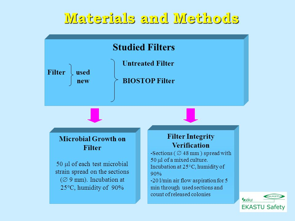 Studied Filters Untreated Filter Filter used new BIOSTOP Filter Microbial Growth on Filter 50  l of each test microbial strain spread on the sections (  9 mm).