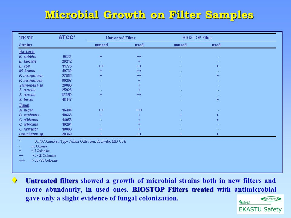 Studied Filters Untreated Filter Filter used new BIOSTOP Filter Microbial Growth on Filter 50  l of each test microbial strain spread on the sections