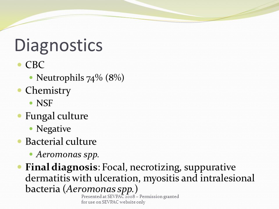 Diagnostics CBC Neutrophils 74% (8%) Chemistry NSF Fungal culture Negative Bacterial culture Aeromonas spp.