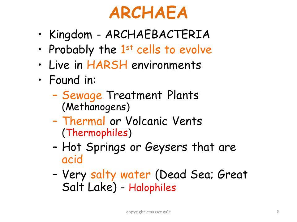 9 ARCHAEAN