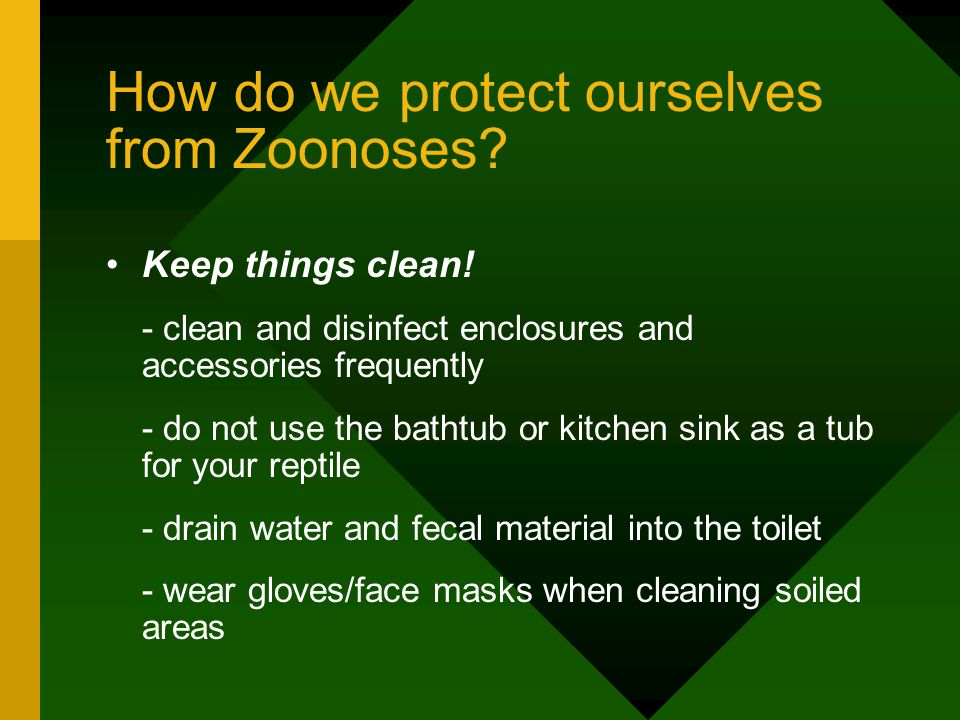 How do we protect ourselves from Zoonoses. Keep things clean.