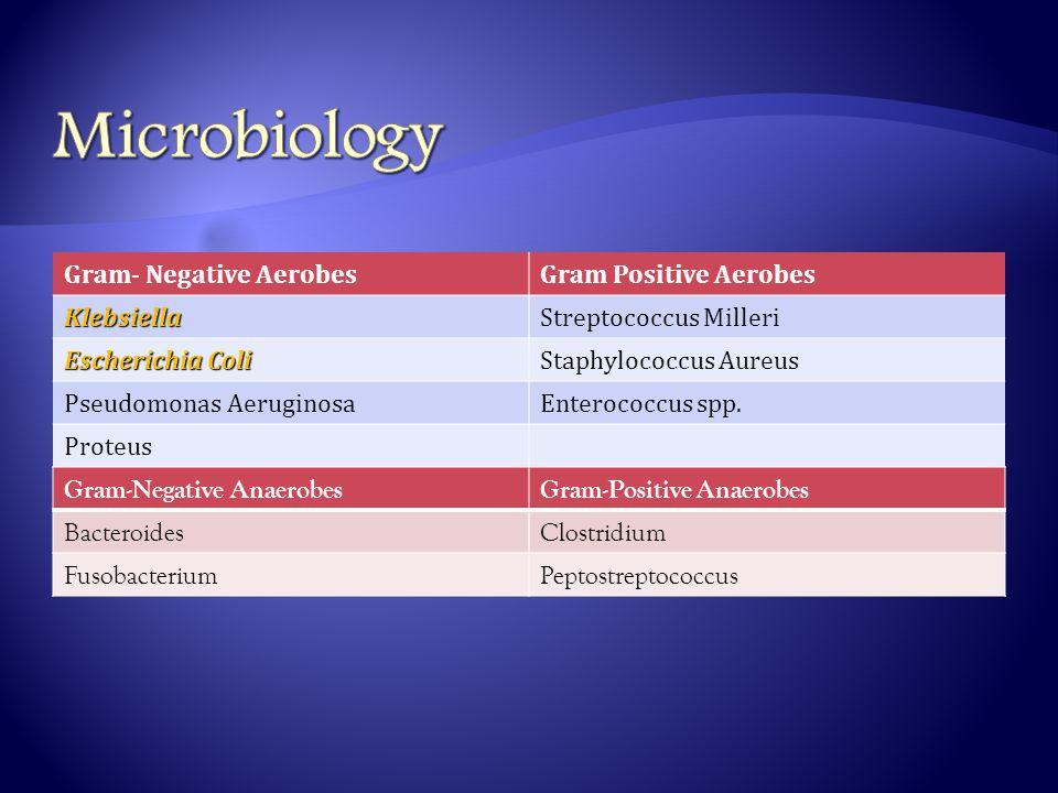 Gram- Negative AerobesGram Positive AerobesKlebsiellaStreptococcus Milleri Escherichia Coli Staphylococcus Aureus Pseudomonas AeruginosaEnterococcus spp.